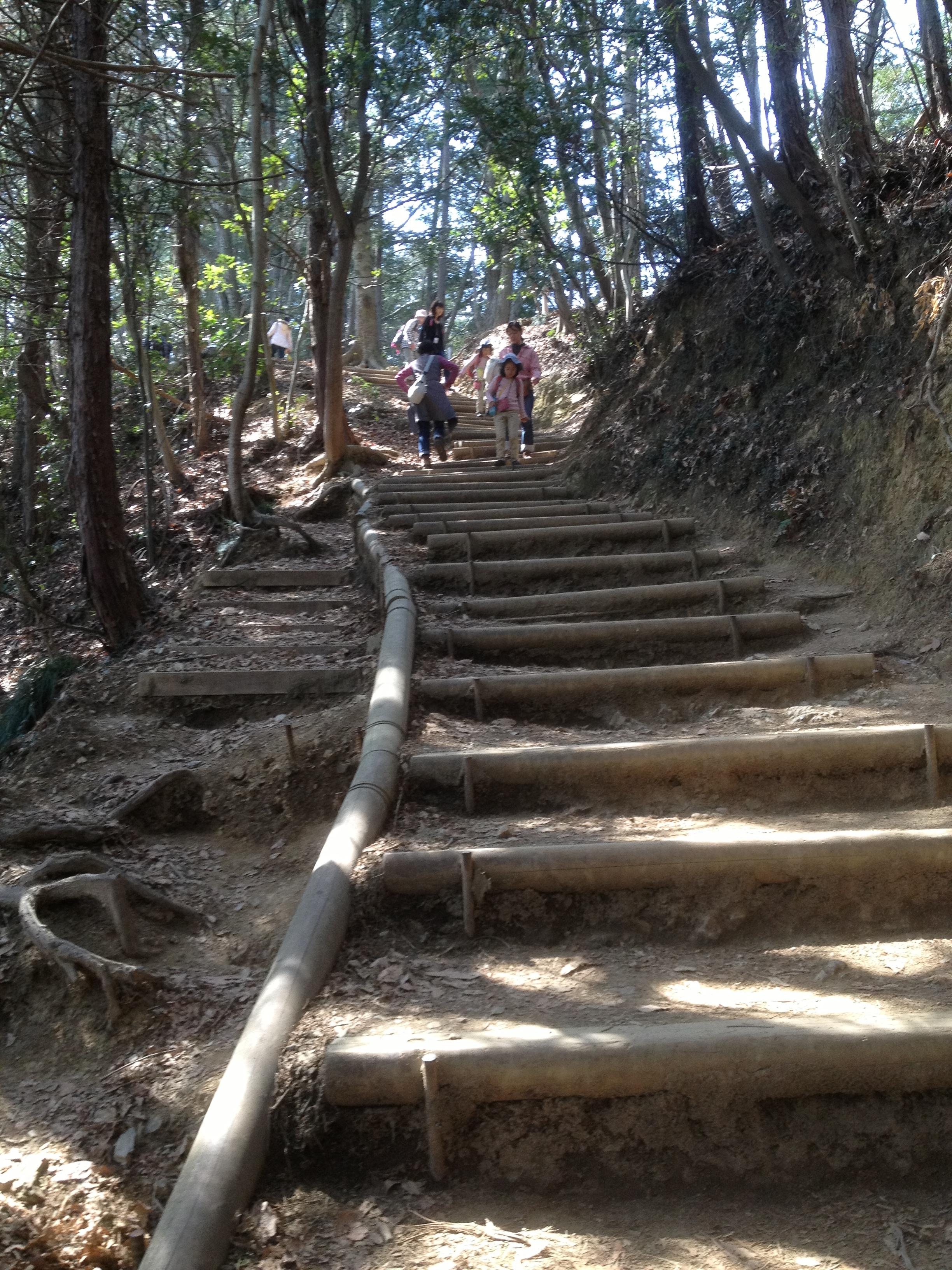 Day Trekking At Mt Takao Deepjapan